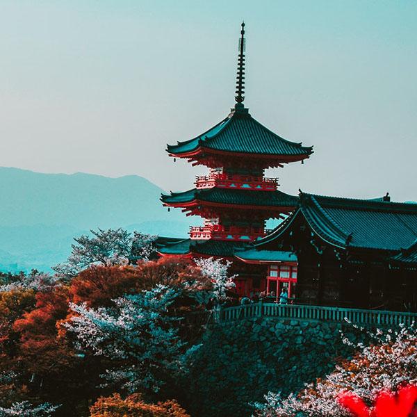 Japanese Worldover International School